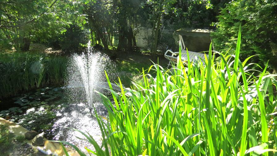 Therapeutische Wohngemeinschaften: Garten Treskowstraße mit Teich und Springbrunnen