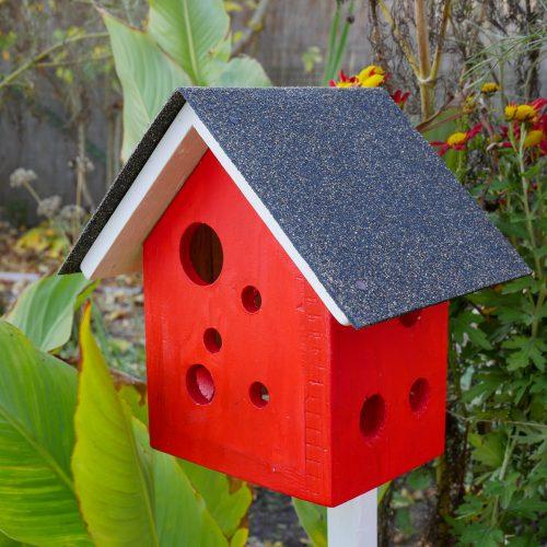 Marienkäferkiste aus dem Nadelholz. ein rotes Vogelhäuschen mit vielen kleinen Löchern